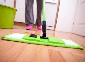 Как избавиться от земляных блох в доме и квартире